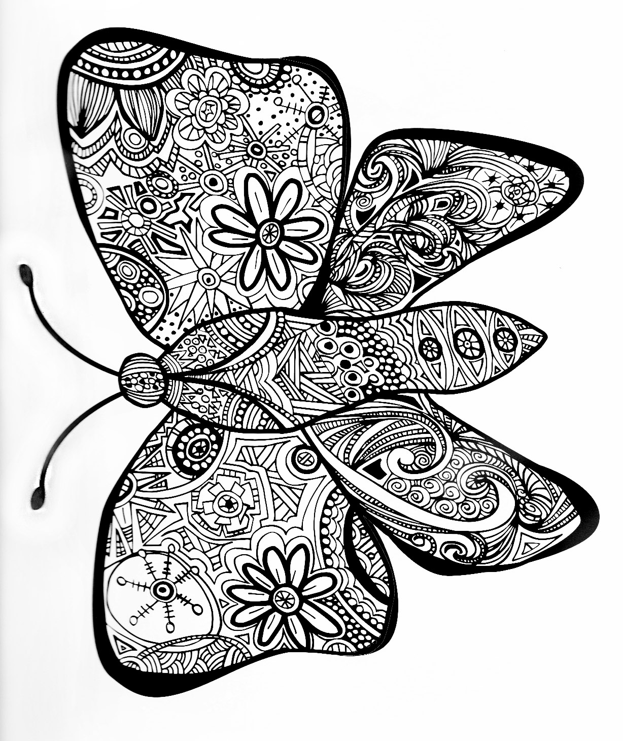 Butterfly to download and color